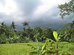 Bali Wet